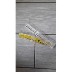 Righello 15 cm Minions