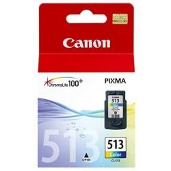 Cartuccia Canon 513 Colore